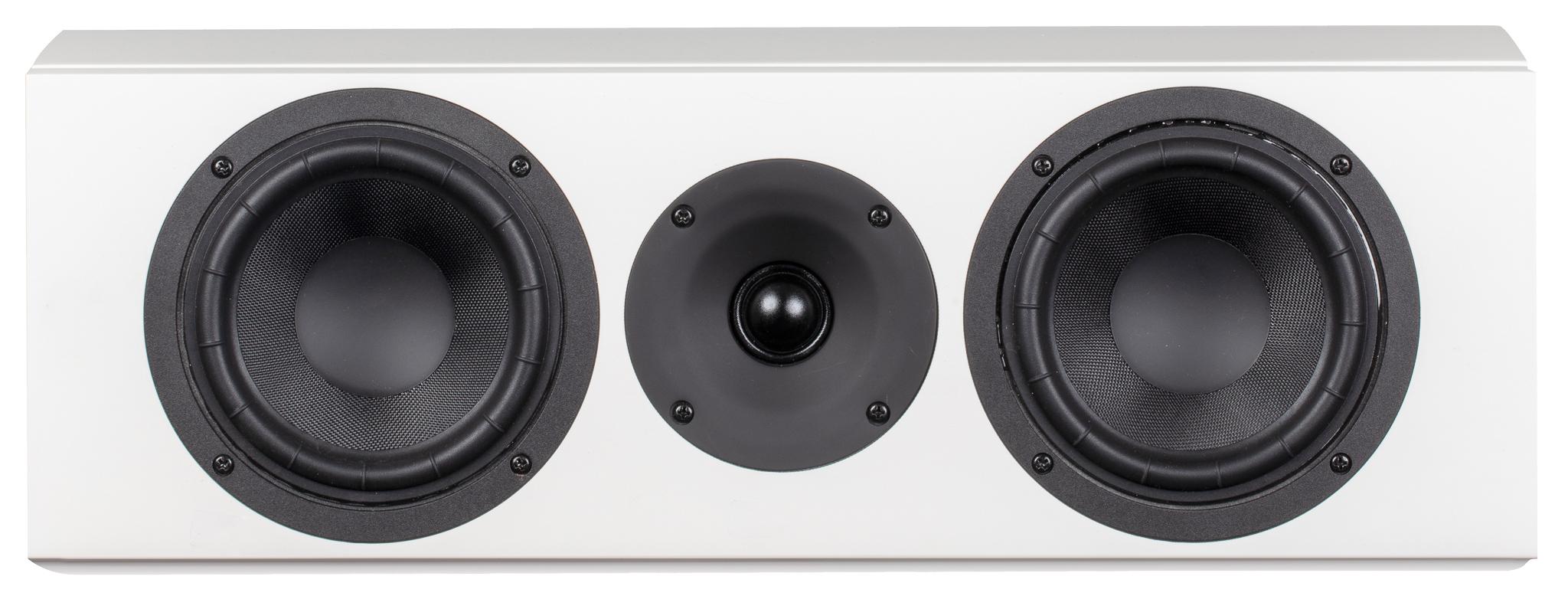 System Audio legend 10 silverback keskikaiutin